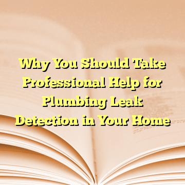 Why You Should Take Professional Help for Plumbing Leak Detection in Your Home